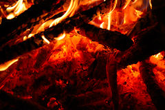 Burning wood in the fire Stock Images