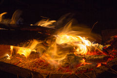 Burning wood in the fire Royalty Free Stock Photo