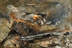 Burning wood in the fire, divorced by tourists royalty free stock photography