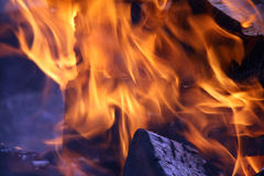 Burning wood in fire flame Stock Photos