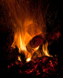 Wood fire. Burning wood fire with flames Stock Photos