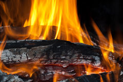 Wood fire. Burning wood fire with flames Royalty Free Stock Photos