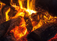 Burning wood on fireplace Stock Image