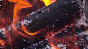 Burning wood in fireplace. Close up