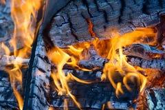 Burning wood, flame and smoke on blue background. Vivid Royalty Free Stock Image