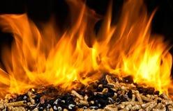 Burning wood pellet Stock Image