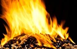 Burning wood pellet Royalty Free Stock Photo