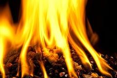 Burning wood pellet Royalty Free Stock Image
