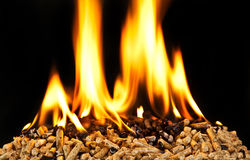 Burning wood pellet Royalty Free Stock Image