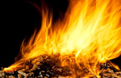 Burning wood pellet Stock Photography