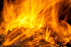 Burning wood pellet Royalty Free Stock Photos