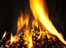 Burning wood pellet Stock Image