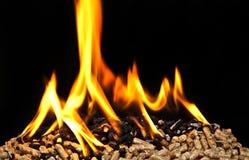 Burning wood pellet Stock Photography
