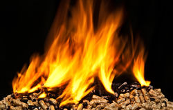 Burning wood pellet Stock Photos
