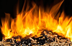 Burning wood pellet Royalty Free Stock Images