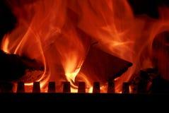 The burning wood Stock Photos