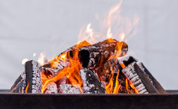 Burning wood - red and orange fire for warming hands Royalty Free Stock Photo