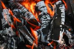 Burning wood. Stock Photo