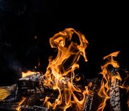 Burning wooden logs in fire, campfire on black. Burning wooden logs in fire, campfire isolated on black background stock images