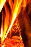 Burning wooden logs Stock Image