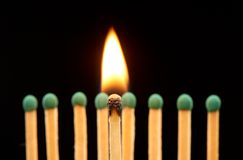 Burning wooden match standing in front of defocused set of eight green matches Royalty Free Stock Image