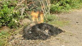 Burning of yard waste, burning rubbish, burn grass. Burning of yard waste, such as leaves, grass and other natural vegetation with lots of smoke stock footage