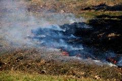 burns ( Zdjęcie Royalty Free