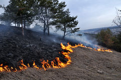 Burns dry grass not mown_3. The real environmental disaster and spring is not arson dry cut grass that grew around settlements Stock Image