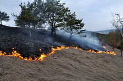 Burns dry grass not mown_8. The real environmental disaster and spring is not arson dry cut grass that grew around settlements Stock Images
