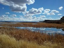 Burns Oregon. Burns, Oregon is the home to many Wildlife Refuges.  Malheur National Wildlife Refuge being one.  It`s 185,000 acres sees over 250 species of Royalty Free Stock Photography