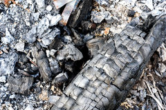 Burnt Charcoal and Old Extinguished Fire royalty free stock photo