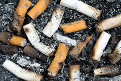 Burnt cigarette butts and ashes Stock Photo