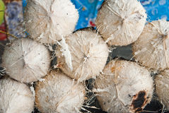 Burnt coconuts Stock Photos