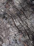 Burnt cracked wood texture. Stock Photos