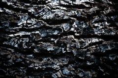 Burnt drewniana tekstura Zdjęcie Royalty Free