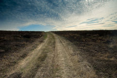 Burnt earth after conflagration. With a road stretching out to horizon Royalty Free Stock Image