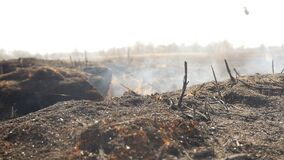 Burnt earth in the field. Steaming grass. Close-up