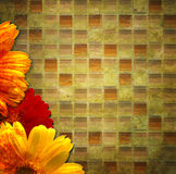 Burnt floral background Royalty Free Stock Photos