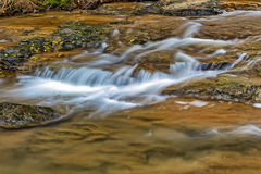 Burnt Fork Creek in Atlanta, GA Royalty Free Stock Images