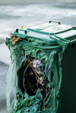 Burnt green garbage can. Green garbage can burnt by vandalists with large hole in it Royalty Free Stock Photos