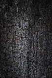 Burnt grunge background Royalty Free Stock Image