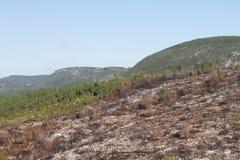 Burnt hills Stock Image