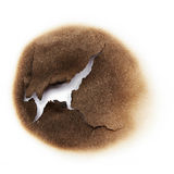 Burnt hole of paper Stock Image