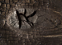 Burnt Knot Wood Macro Stock Photo