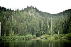 Burnt Lake on a Cloudy Day. Burnt Lake in Oregon on a Cloudy Day Stock Photos