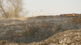 Burnt land on the field. Ecological catastrophe