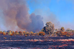 Burnt landscape. Burnt land and a lot of smoke in Australia stock photography