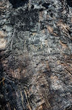 Burnt log with charcoal surface. Charcoal surface on burnt driftwood log Stock Photo
