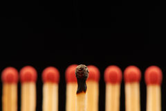Burnt match in front of eight red wooden matches Stock Photography