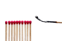 A burnt match near other matches Royalty Free Stock Photo